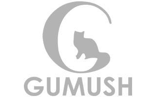 Gumush_320X200.png